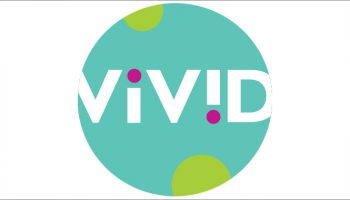 Vivid Toy Group