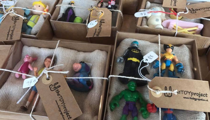Jane Garfield, The Toy project